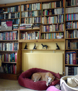 DogAndBooks