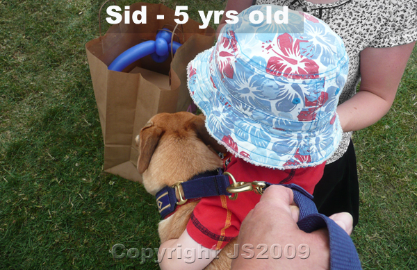 Sid-Age-2